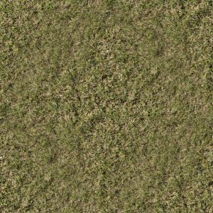 finished_grass_texture